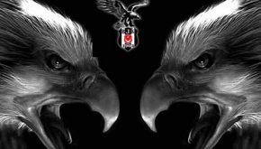 beşiktaş kara kartal facebook